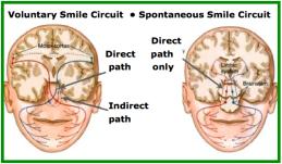SMILE circuitry