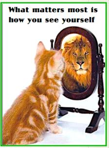 self-evealuation