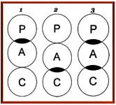 PAC overlaps