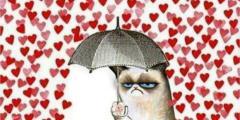 preempt love