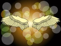 cosmic-wings