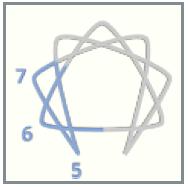 triad 567