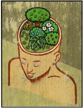 heal&grow