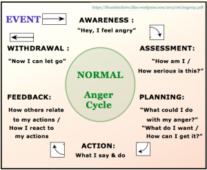 NORMAL anger cycle