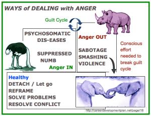 3 anger ANIMALS