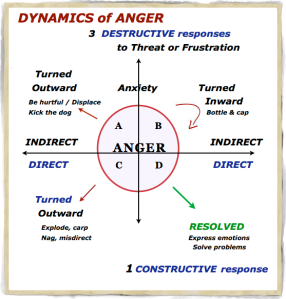 MY dynamics of anger
