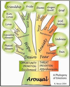 options tree